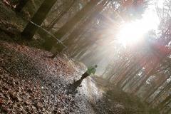Hardloper in het bos