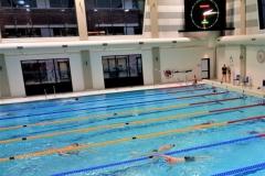 Geoefende zwemmers trekken baantjes in zwembad Sportstad in Heerenveen.